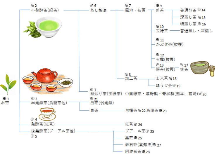お茶の種類を分かりやすく網羅した図です。