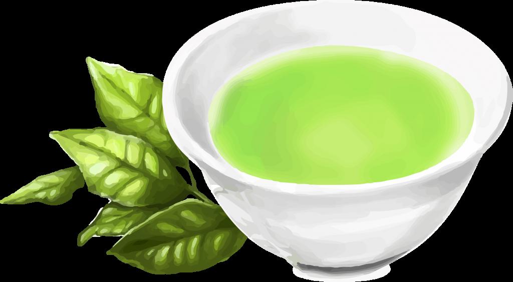 カテキンとケルセチンの両方を多く含む緑茶